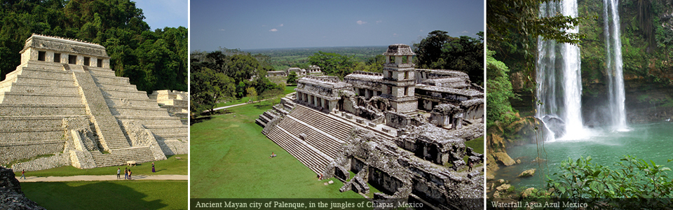 The Kingdom of the Maya